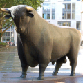 """Migración tóxica y el caso de los """"toros"""""""