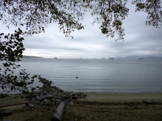 Barcos en el puerto de Vancouver