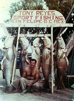 """Sport Fishing"""
