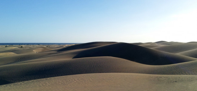 The Canary Islands, Spain's Paradise Lost